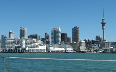 7 Tips on How to Start a Business In New Zealand